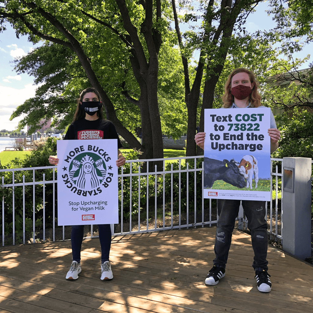 Starbucks protest posters